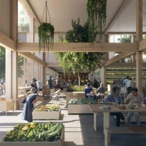 The Urban Village Project: A Vision for Liveable, Sustainable and Affordable Homes